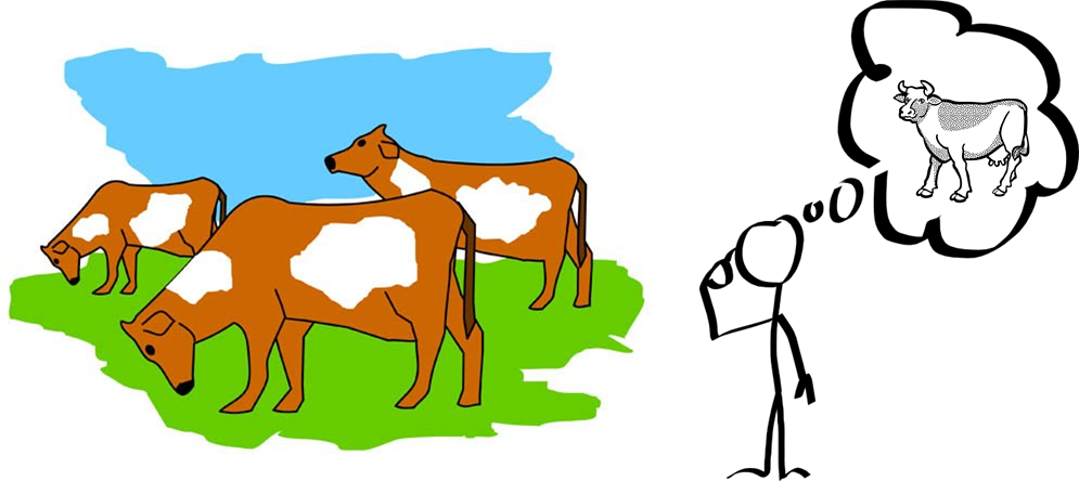 Abstract Average Cow